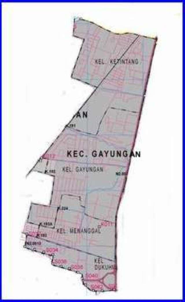 Peta Kecamatan Gayungan Surabaya Selatan - Lokanesia
